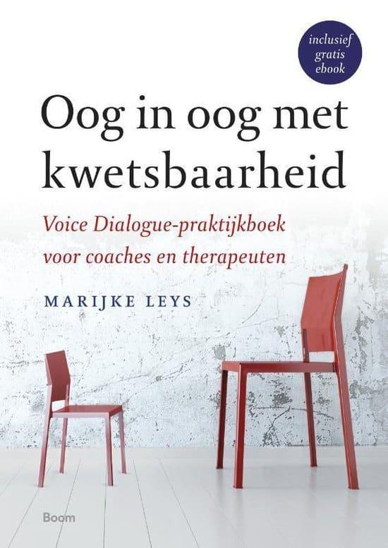 Boek Oog in oog met kwetsbaarheid - Marijke Leys
